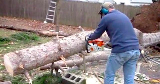 Regrowing Tree