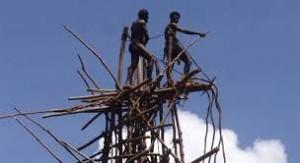 Vanuatu Land Diving Tower