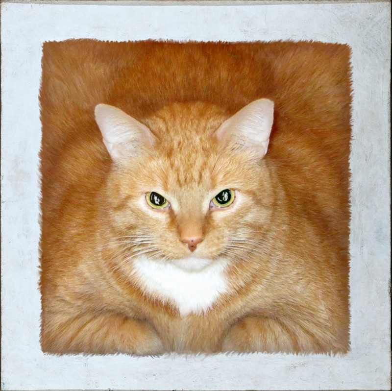 Art Improved By Fat Ginger Cat 69