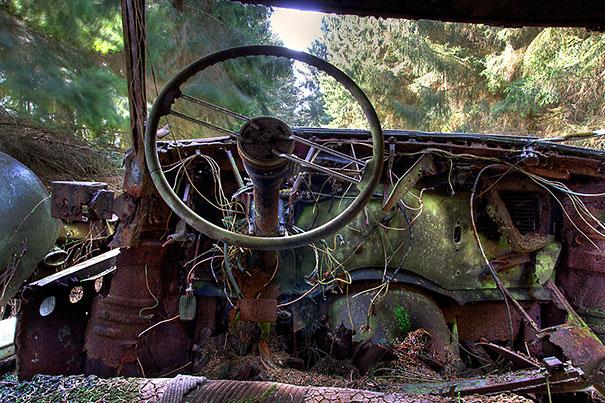 Car Graveyard 4