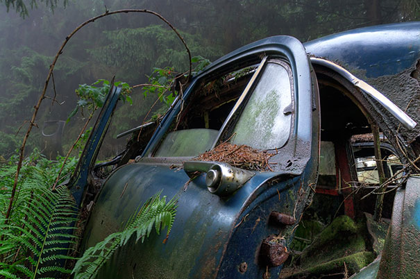 Car Graveyard 8