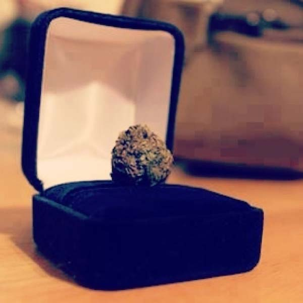Worst Marriage Proposals 10