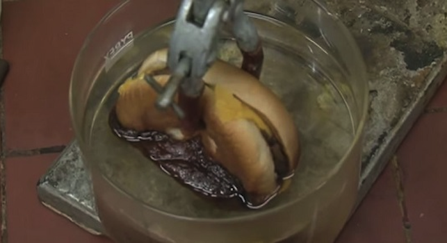 McDonalds Burger Dissolved Stomach Acid