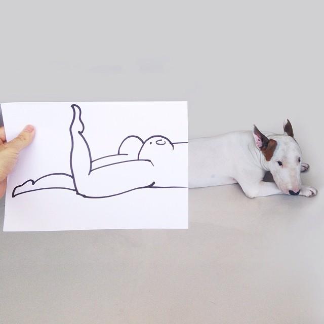 Bull Terrier Cute Illustrations 8