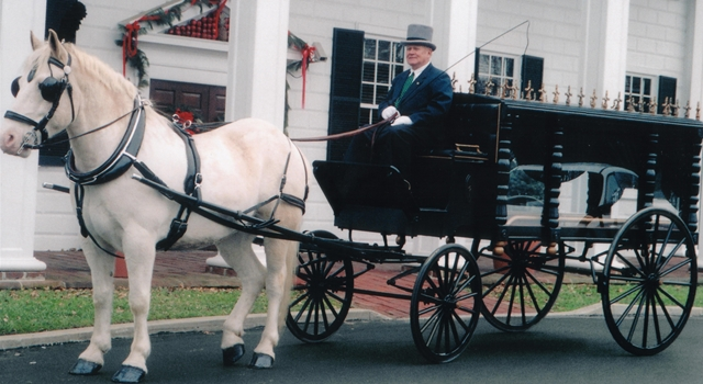 Horse Dies At Funeral