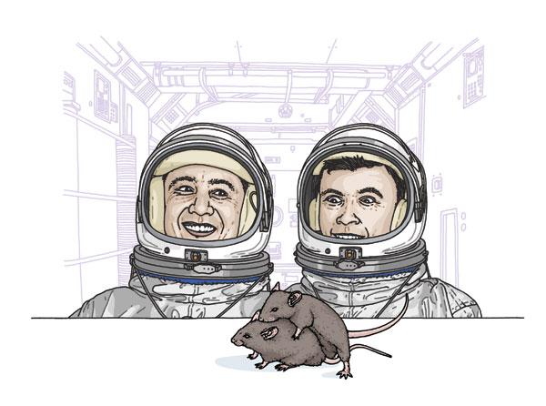 Sex In Space - rats