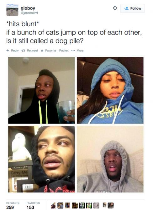 Stoner Questions 17