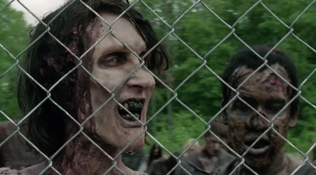 Walking Dead Bad Lip Reading