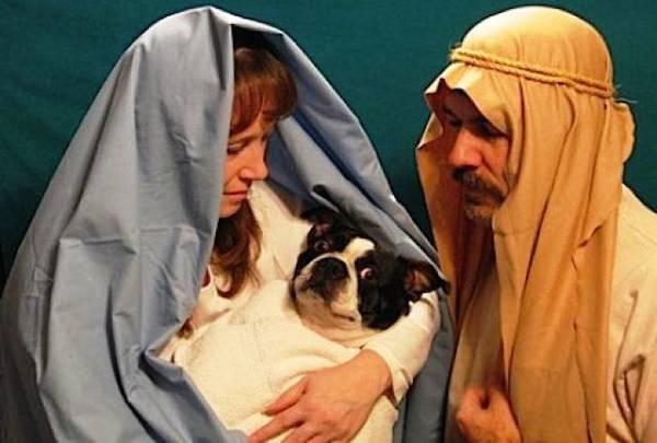 Awkward Christmas Family Photographs 15