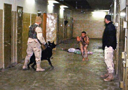 CIA torture report use of dogs