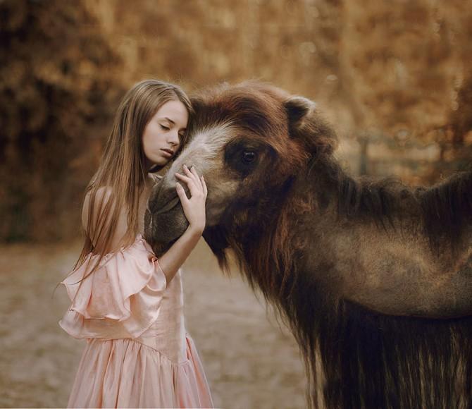 Katerina Plotnikova - Girl And Camel