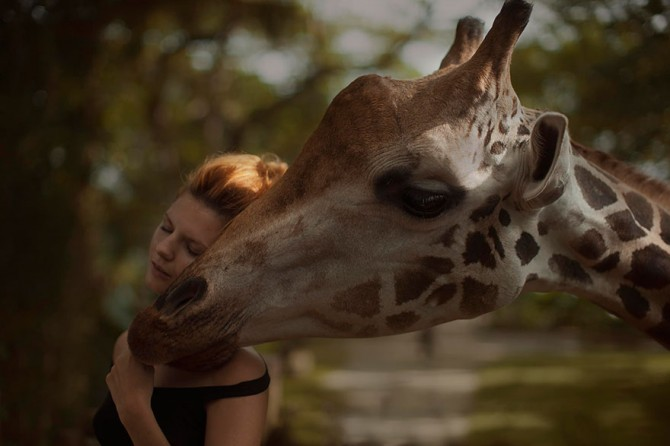 Katerina Plotnikova - Girl And Giraffe#