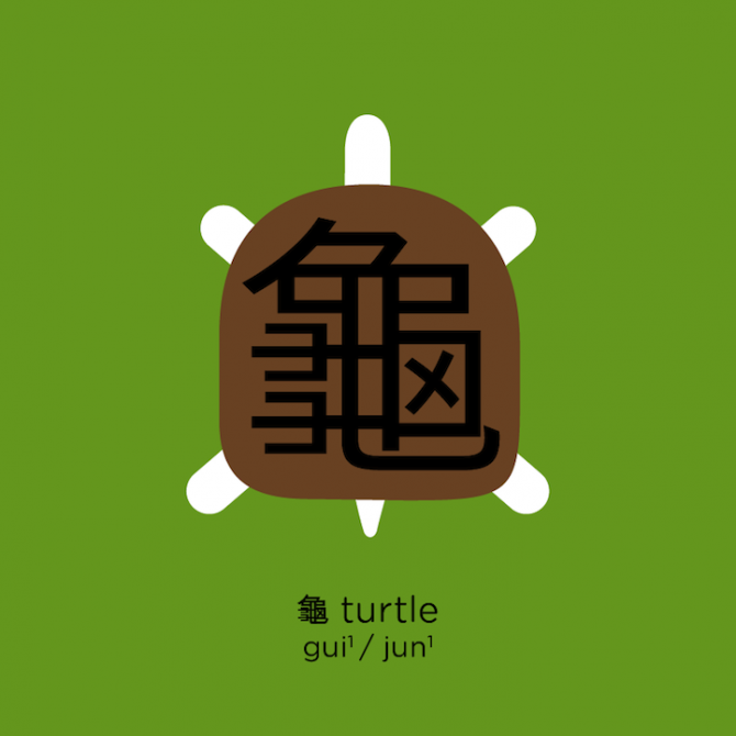 Learn Chinese 5 Turtle