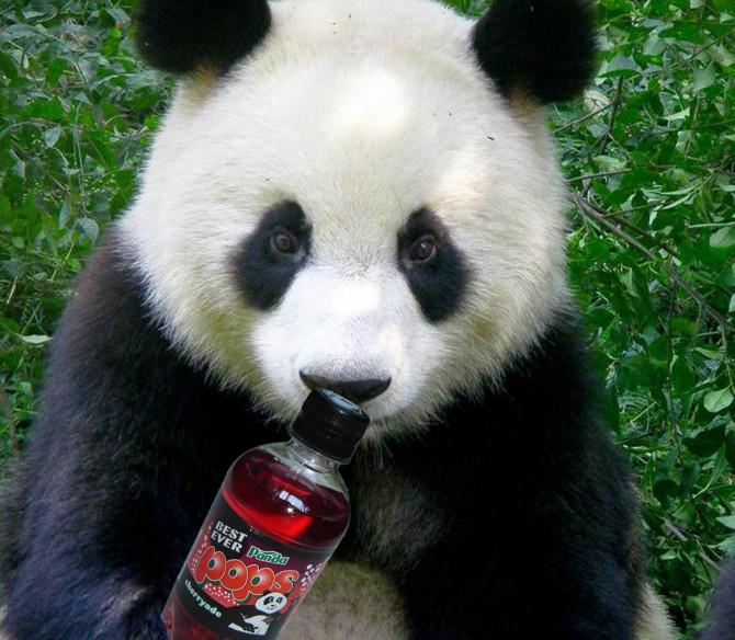 pandapops