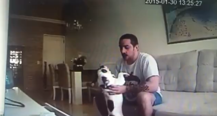 Hidden Camera Dog Beating