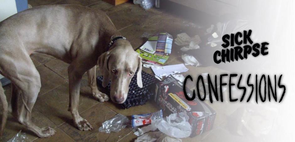 confessiondog