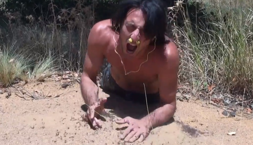 Andrew Ucles Ant Nest