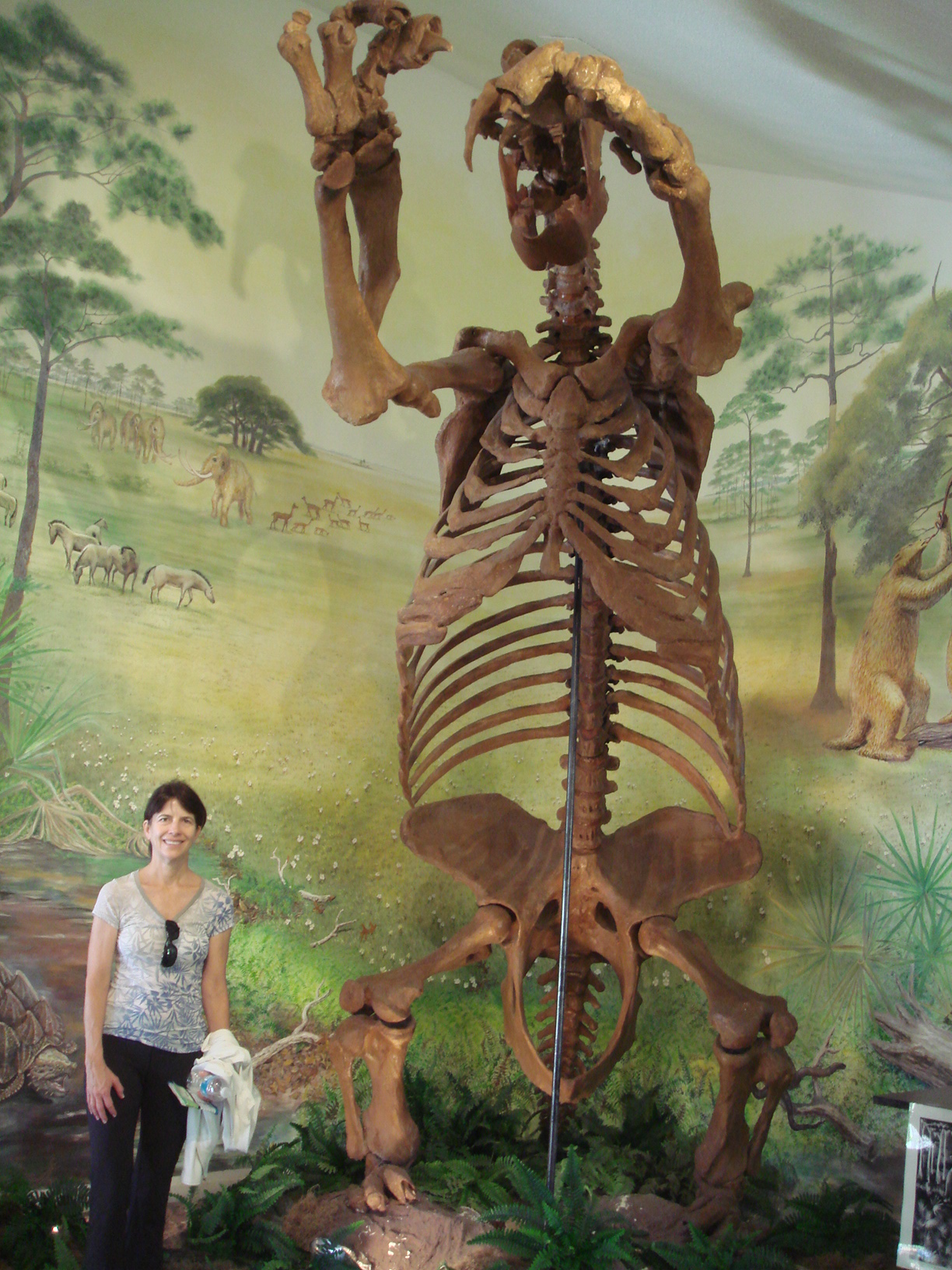 Places You Can't Visit - Giant Land Sloth