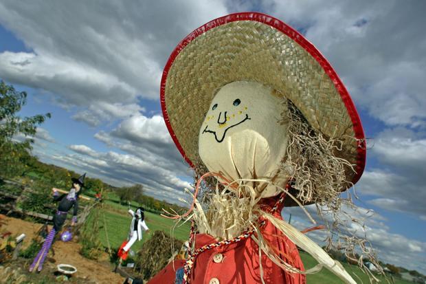 Scarecroww