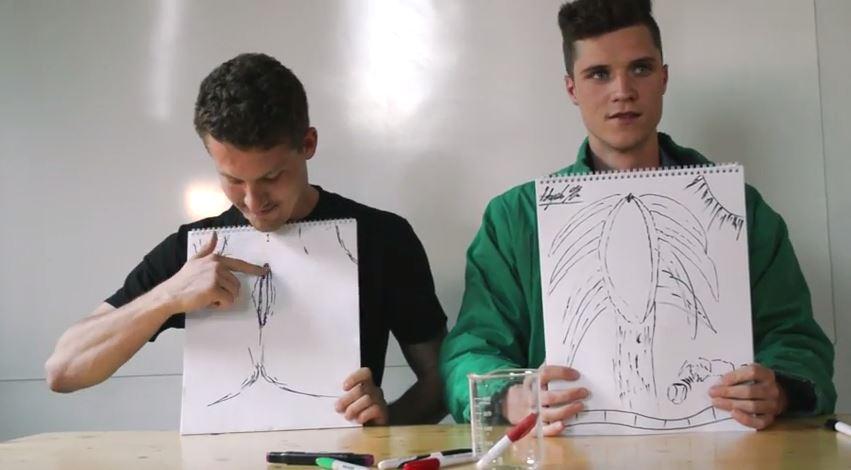 Vag Drawing