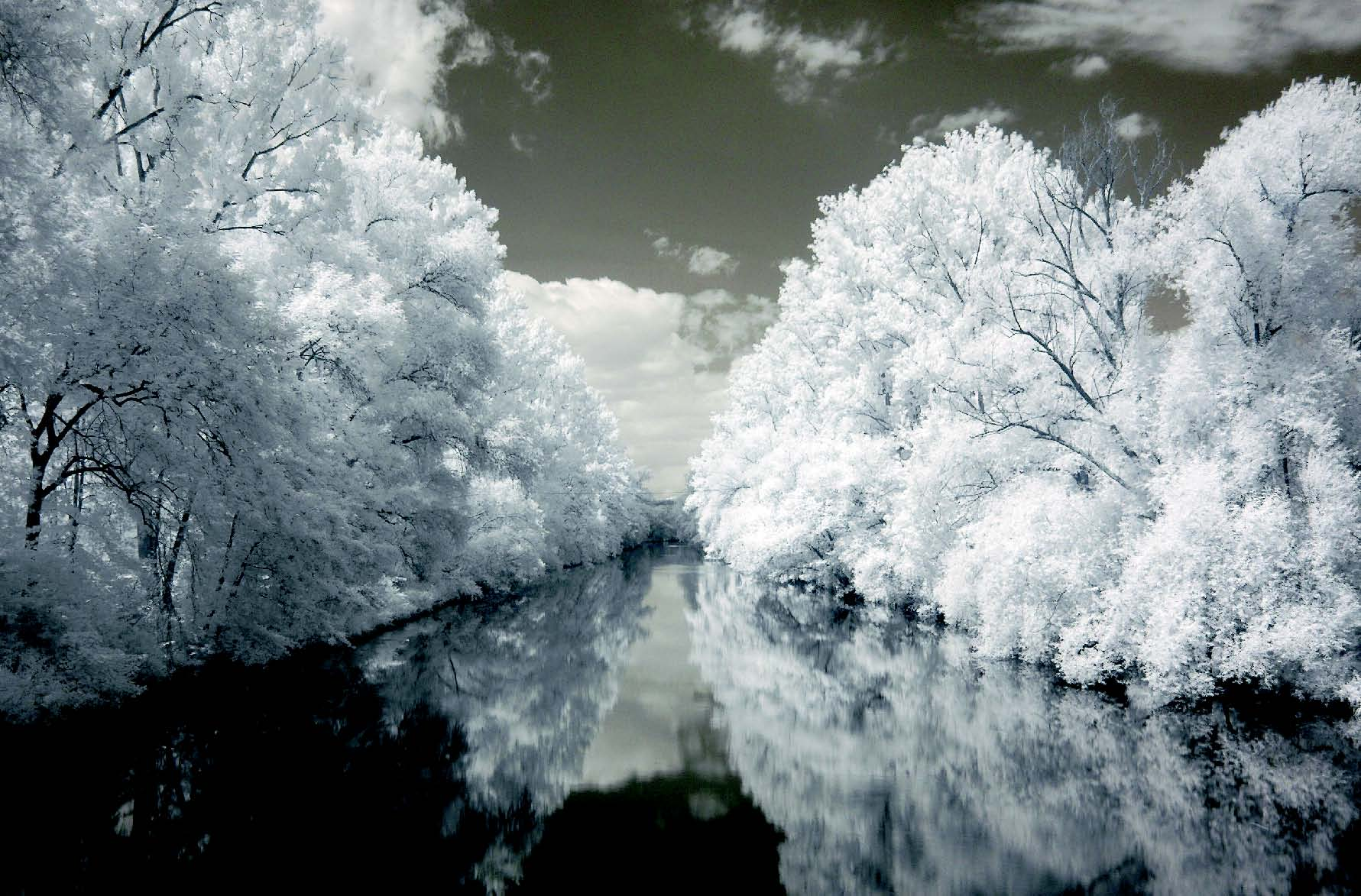 Infrared Photography - River