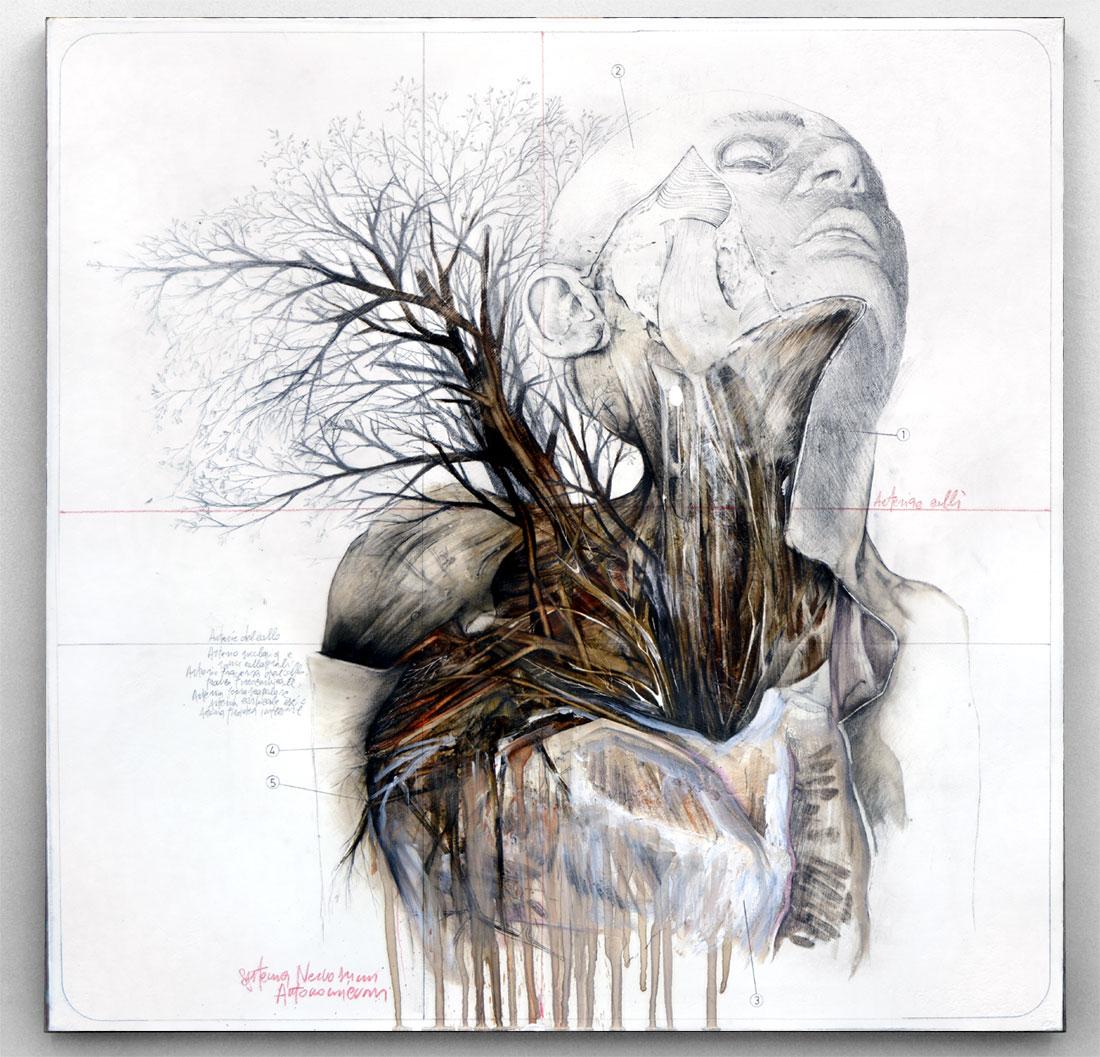 Nunzio Paci - Anatomy And Birds 1