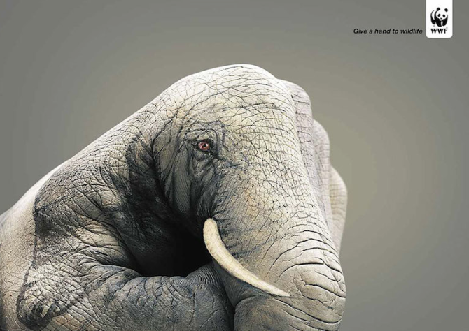 Powerful Social Issue Adverts 28