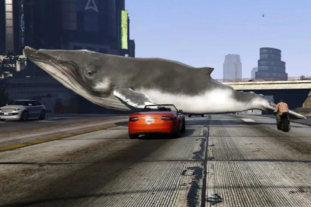 Whales GTA V
