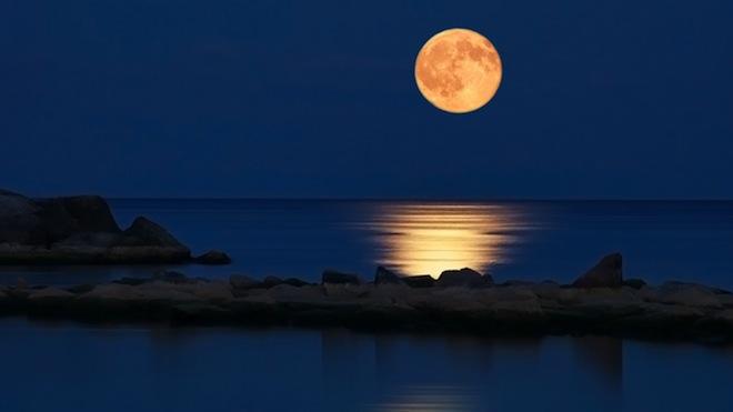 Amazing Sleep Experiments - Full Moon