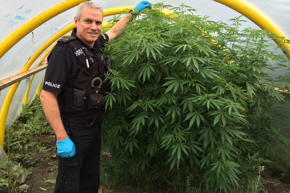 Cannabis Durham