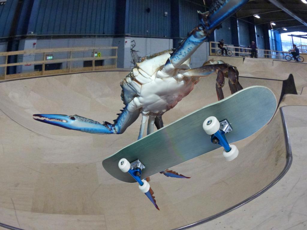 Crab 0