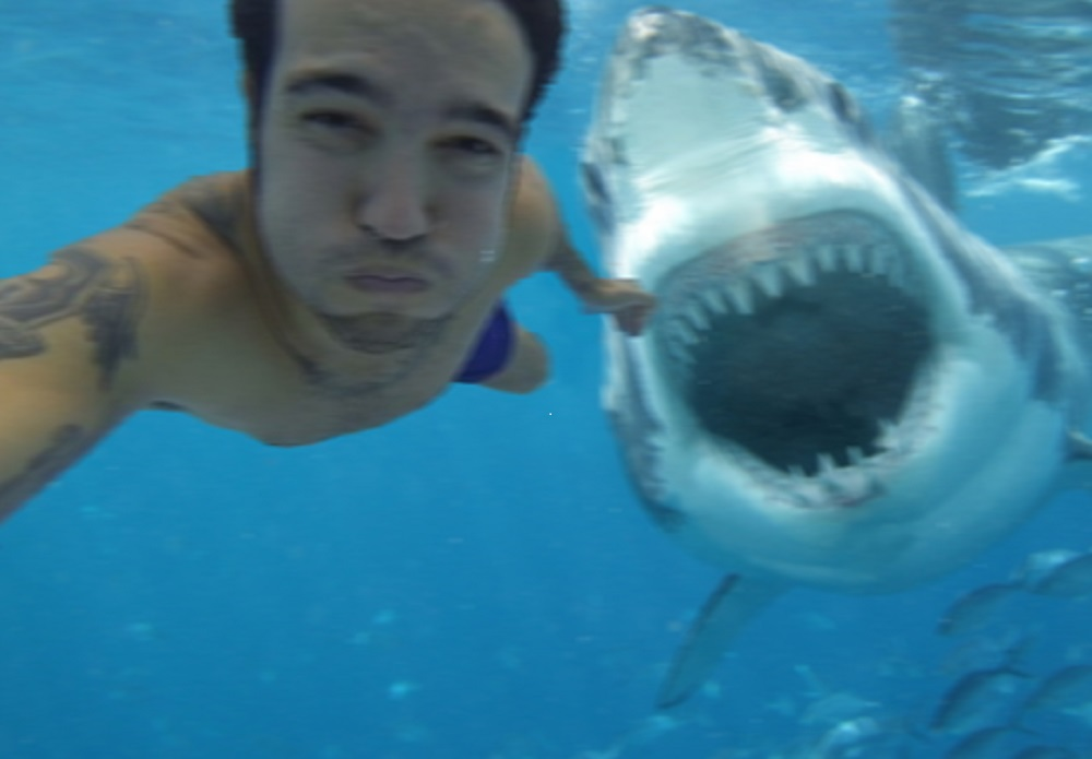 Selfie Shark Attack