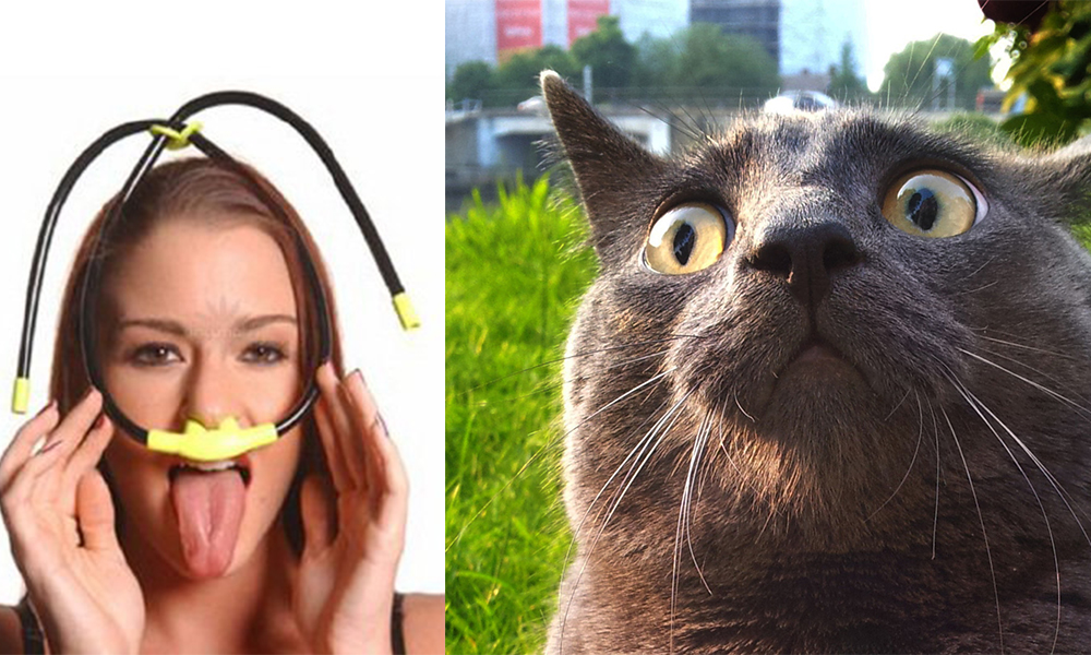 Cat Snorkel