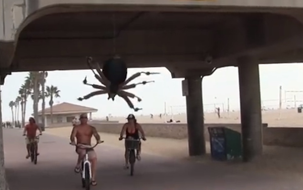 Giant Spider Prank