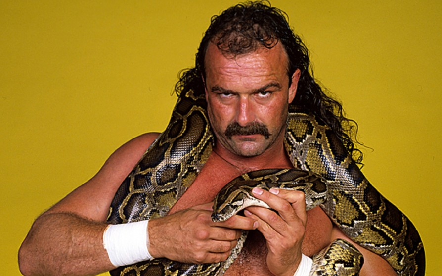 Jake The Snake Roberts Just Released A Really Disturbing Video That