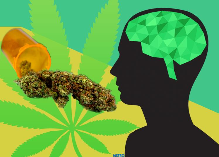 Cannabis IQ