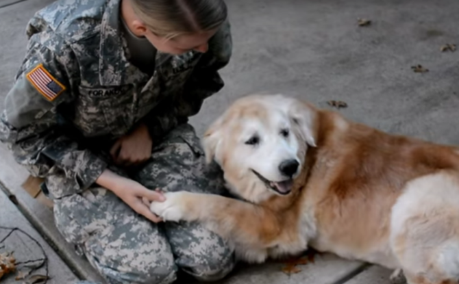 Dog Give Birth To Rare Green Puppy