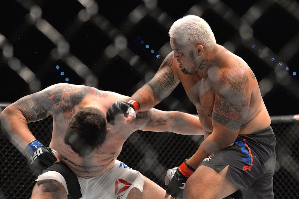 Mark Hunt Frank Mir Knockout