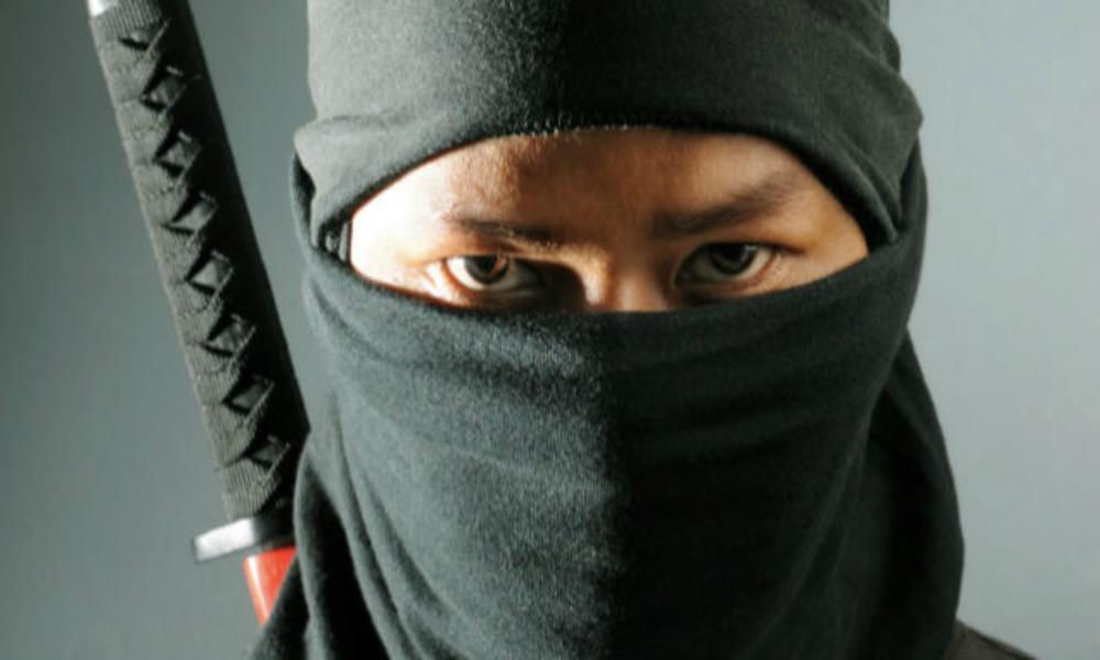 Ninja bods