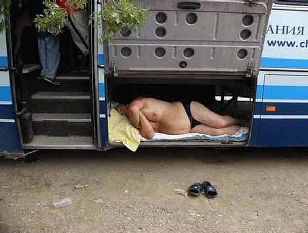 6230-bus-1