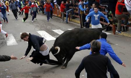 Guy Gored Bull