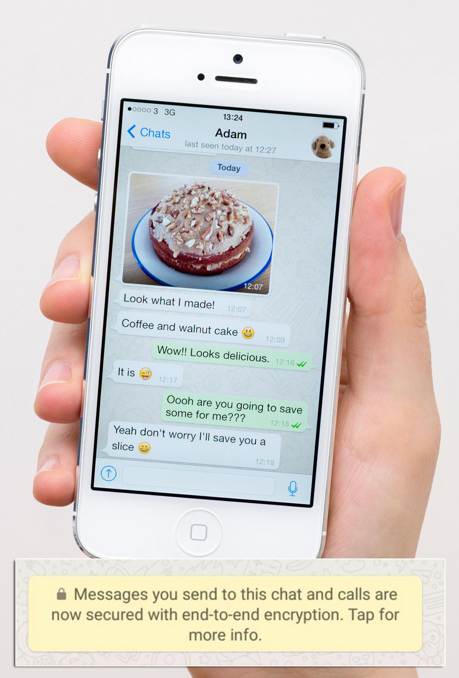 Encryption on WhatsApp
