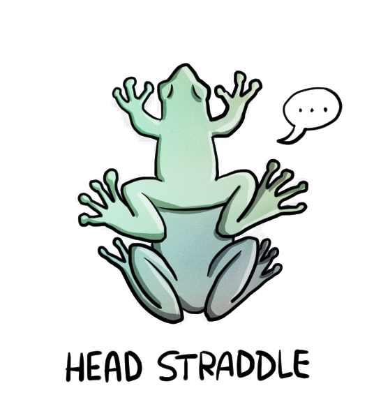 Opinion sex position straddle seems excellent