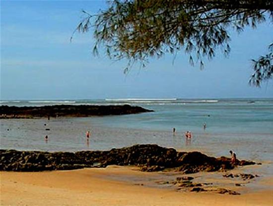 Tsunami Picture 1