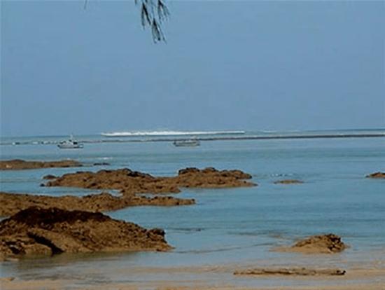 Tsunami Picture 2