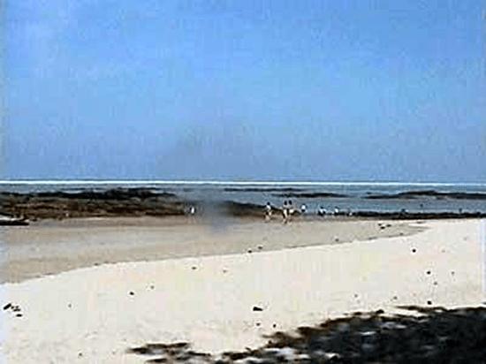 Tsunami Picture 3