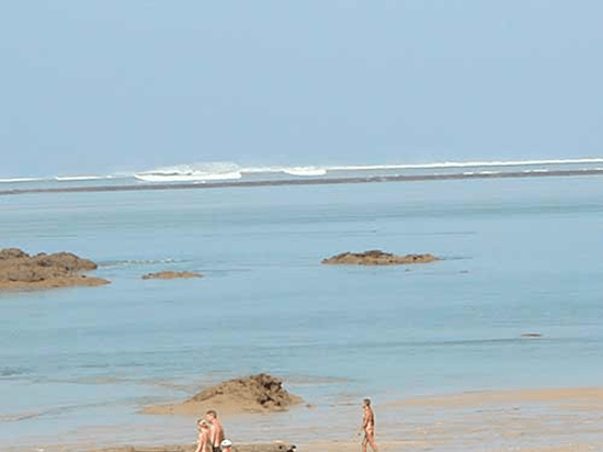Tsunami Picture 4