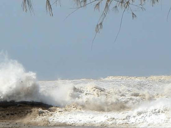 Tsunami Picture 9