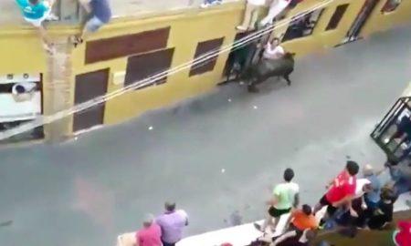 Woman Gored Bull