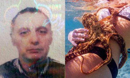 Andrew Burgess octopus